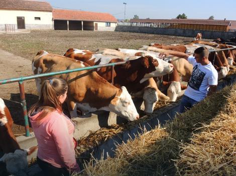 Valjevska Poljoprivredna škola kao uspešan kombinat i primer dualnog obrazovanja