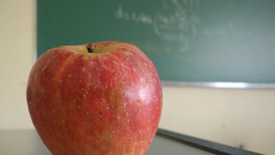 Praksa korisna, klasično školovanje ipak nužno