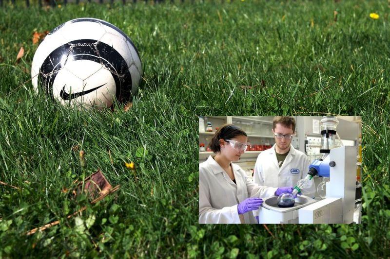 Fudbal i farmacija