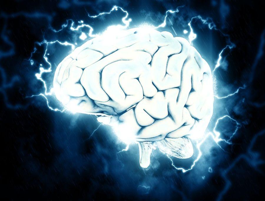 Antropolog tvrdi: Ljudi su sve manje inteligentni