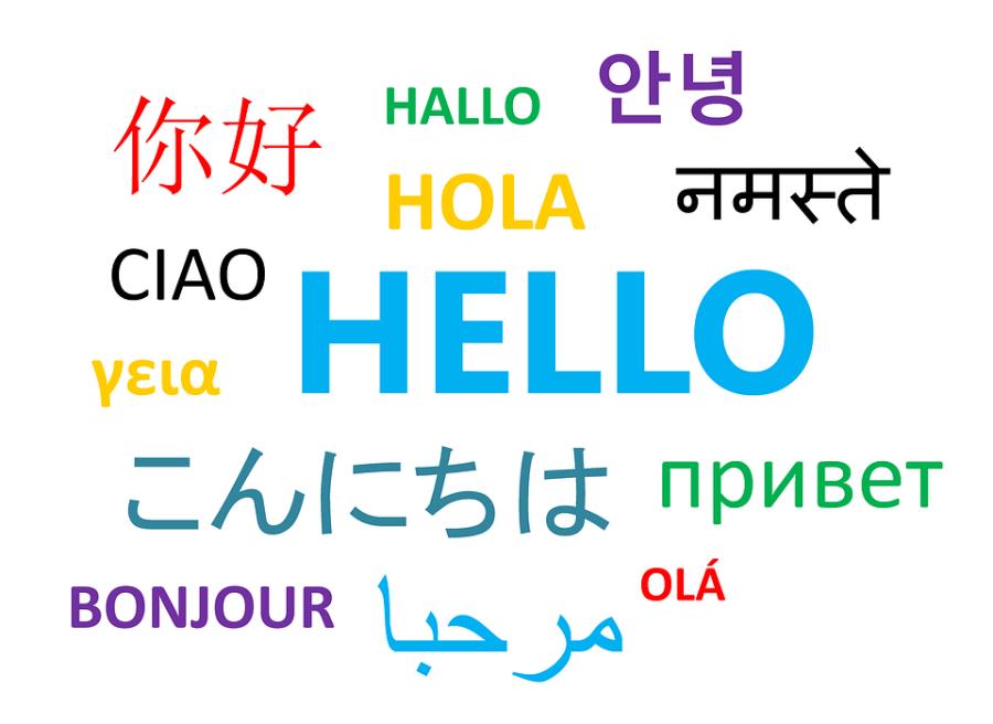 Svi bi da studiraju kineski, japanski, arapski...